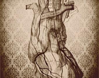 Anatomical Heart Decor, Anatomy Print, Heart, Dark, Victorian, Wood Heart, Sepia, Neutral, 8x8 inch Fine Art Print, My Wooden Heart