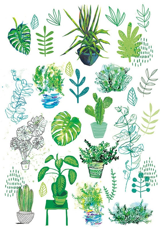 All My Plants Archival Wall Art Print botanical illustration