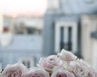 Paris Photography, Paris Apartment, Pink Roses on the Paris Balcony, Montmartre Rooftops, Spring in Paris, baby blue
