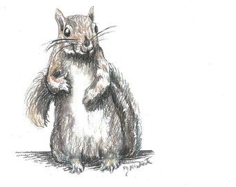Squirrel Standing up for Herself - Mixed Media