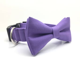 Amelia Purple Dog Bow Tie, Wedding Dog Bow Tie and Collar, Wedding Dog Bow Tie, Dog Collar, Purple Dog Collar, #dog