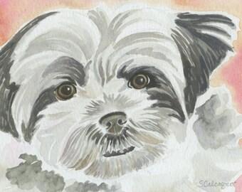 Shih Tzu Watercolor Painting, Shih Tzu Original Dog Art, Dog Lover Gift, Puppy Painting, Children's Art