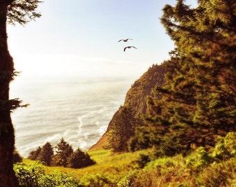 Oregon Beach photo, HDR photograph, Orange, green, brown, fine photography prints, Oregonian Dream