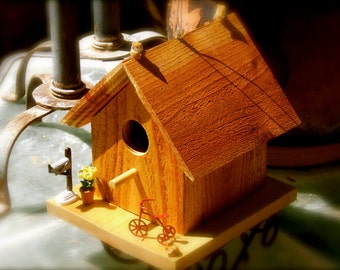 "Title:  ""Mail's Here""  Birdhouse"