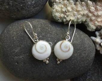 Sweet Shiva Shell, Eye of Shiva Sterling Silver Earrings ~ Mermaids Money ~ Oracle for Good Luck