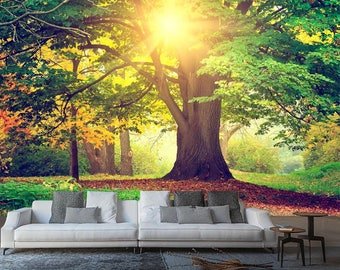 Bright Forest Sunlight Wall Mural, Nature Wall mural, Wallpaper, Wall décor, Wall decal, Nursery and room décor, Wall art, Canvas print
