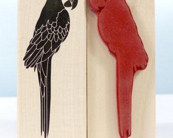 Stamp stamp Parrot bird Parrot bird