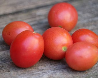 Red Tom Thumb Cherry Tomato Seeds, dwarf tomato plants, pots and container tomatoes