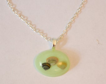 Sea Shell Resin Necklace