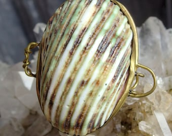 Brass Bound Sea Shell with Wire Bail, Latch, Perfect Etui for Thimble, Small Treasures, Vintage Souvenir Piece, Jewelry or Sewing Accessory
