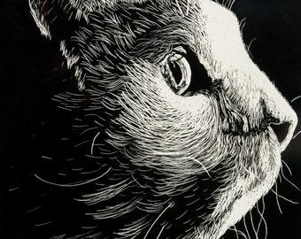 Cat Art, Cat Etching, Framed Cat Art, Original Cat Art, Cat Illustration, Feline Art