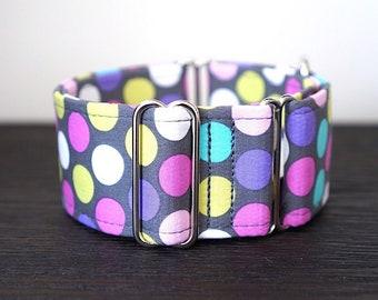 Martingale collar, Greyhound Collar, Galgo Collar, Saluki Collar, Sighthound Collar, Polka Dots Collar, Polka Dots Martingale