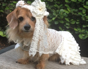 Dog Wedding Dress with Veil by FiercePetFashion