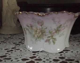 Monbijou Porcelain  Bowl