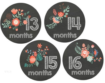 Baby Monthly Stickers Second Year Stickers 13-24 Month Stickers