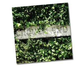 "Greeting card – singles or 6-packs – ""Crouch End Ivy"" – FREE UK postage"