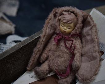 Teddy Doll Bunny