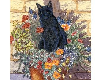Black Cat kitten flowers 8x10 art print