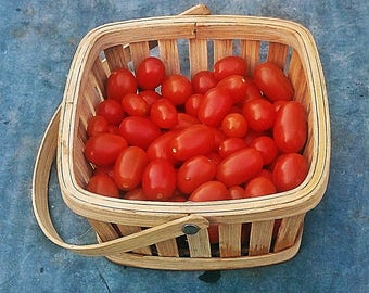 Sprite Tomato Heirloom Garden Seed Non-GMO 30+ Seeds Naturally Grown Open Pollinated Gardening