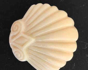 scallop shell soap