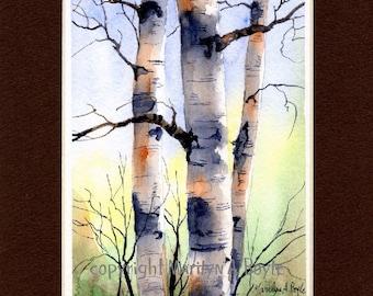 ORIGINAL WATERCOLOR - MATTED - 8 x 10 single mat, birches, art, nature