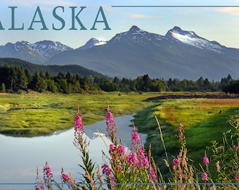 Alaska - Mountain Wilderness and Fireweed (Art Prints available in multiple sizes)