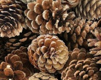 Pinecones--fabric by the yard--Elizabeth's Studio, LANDSCAPE MEDLEY cotton
