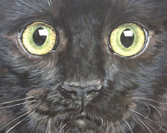 Black Cat print - Mounted