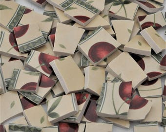 100 Broken China Mosaic Tile -Recycled Plates -  Whimsical - Apple  - Colorful Red - Fruit -