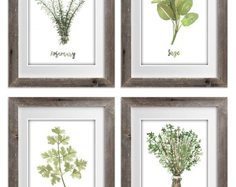Watercolor Painting Herb Collection Set of 4 prints Watercolor Painting Sage Thyme Rosemary Parsley Housewarming Gift Kitchen Decor Garden