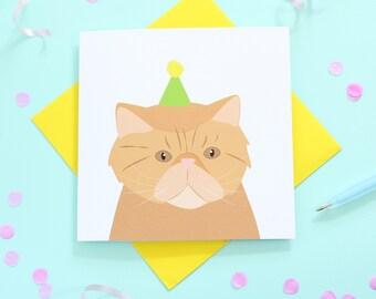 Birthday Persian Cat card