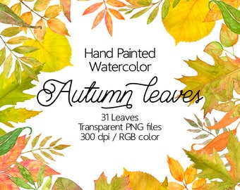Watercolor Autumn Leaves - Watercolor leaves clip art, Hand painted leaves, Watercolor fall, Fall leaves clipart, Digital watercolor leaf