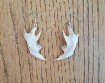 Muskrat Jaw Bone Earrings