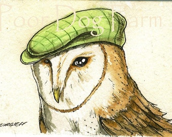 Barn Owl  with hat -