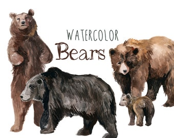 Watercolor Bears, Bear Clip Art, Forest Clipart, Bears Clipart, watercolor animals, woodland animals, brown bears, black bears, bear logo