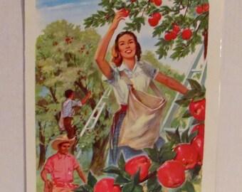 Vintage 1965 Harvest Poster