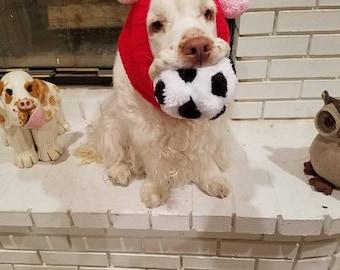 Dog Snood With Pom Poms