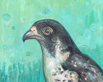 """Finnegan the Peregrine Falcon ORIGINAL paper study 8""""x8"""""""