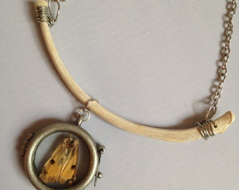 Real coyote rib bone and butterfly window locket necklace