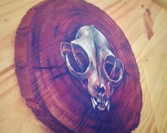 Cat Skull - painting on wood