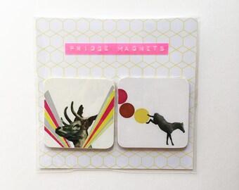 Animal Magnets, Square Retro Fridge Magnets - Animal Magnetism
