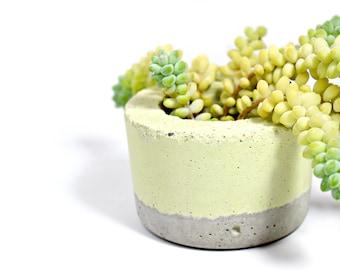 Small round Concrete pastel green planter for succulent Home Decor Urban Industrial Planter