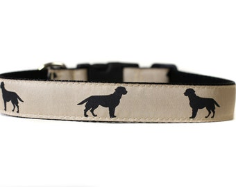 1 Inch Wide Dog Collar with Adjustable Buckle or Martingale in Labrador Retriever