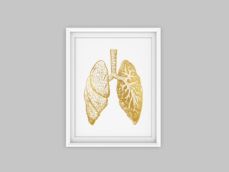 Lunge Kunstdruck gold Anatomie Kunst Anatomie Druck