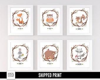 Forest Animal Prints, Woodland Nursery Prints, Forest Nursery Art, Raccoon Print, Fox Nursery Print, Set of 6 Nursery Prints, SKU-RNA115