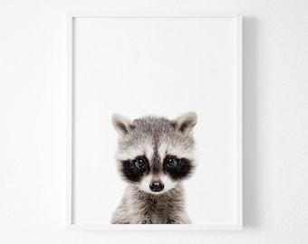 Raccoon Print, Nursery Wall Art, Woodland Nursery Decor, Nursery Animal Wall Art, Raccoon Print Wall Art, Woodland Animals,Nursery Art Print