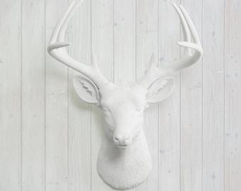 Faux Deer Head Decor by Wall Charmers™ Faux Taxidermy - Resin White Deer Head + Antlers Animal Head Nursery Wall Decor Stag Fauxidermy Buck
