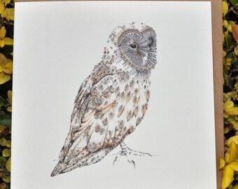 Barn Owl Greeting card 6 x 6 ''