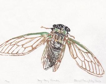 Dog-Day Cicada Linocut - Mini Lino Block Print of Tibicen canicularis, dogday harvestfly or dog-day cicada on Japanese paper