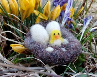Mini chicks in the nest, miniature